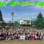 Westie Party ! 集合写真