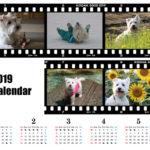 お風呂カレンダー 2019